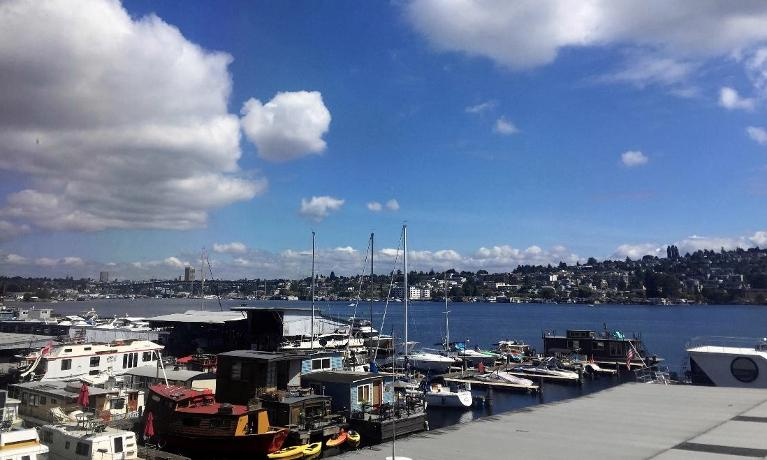 View from office | Seattle WA Therapist